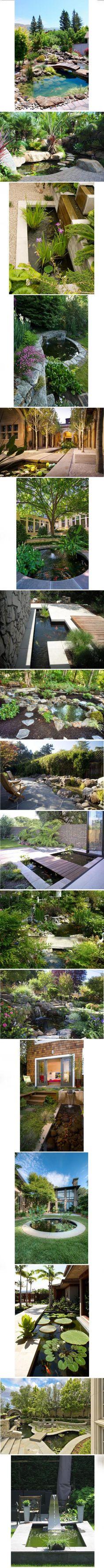 Les plus beaux bassins pour poissons (18 photos)
