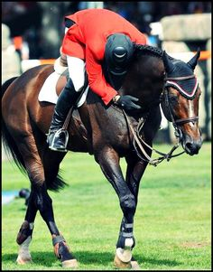 Hickstead getting a hug from Eric Lamaze. Photo by Molly Sorge/The Chronicle of the Horse. http://chronofhorse.com/subscribe