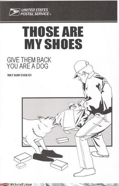 I still find this hilarious. The dog is wearing the shoes.