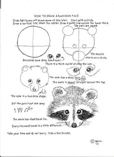How to Draw Worksheets for The Young Artist: How To Draw A Raccoon Face, Lesson and Worksheet.
