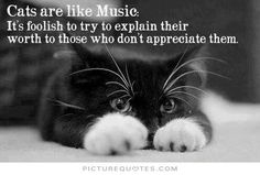Cats are like music. It's foolish to try to explain their worth to those who don't appreciate them. Picture Quotes.