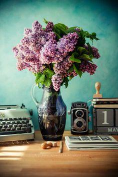 bzy; biurko; maszyna do pisania