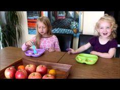 Farm Fresh Egg Taste-Testing with the Kids of Simple Suburban Living ~ Simple Suburban Living