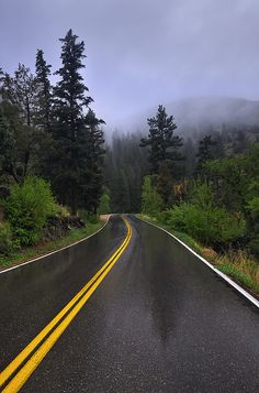 Misty Mountain Road Trip | Flickr - Photo Sharing! - Michael Menefee