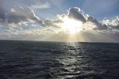 Хроника одного круиза. Первое утро в море и выстрел за бортом: irinadob550 А  это  не  выстрел,  а  гром  и  шторм. Саргассовое  море.