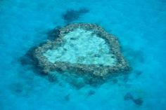 Great Barrier Reef Marine Park, Airlie Beach, Australia