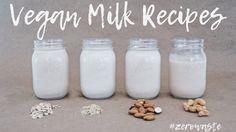 DIY Non Dairy, Plant-based Milks | Zero Waste Recipe