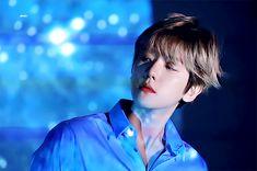 백현 | Baekhyun | EXO | 엑소 | Byun Baekhyun | 2019 Season greeting | Hyunee 'ㅅ' #exo #baekhyun
