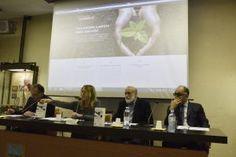 Conferenza stampa di presentazione delle Comunità Laudato si'