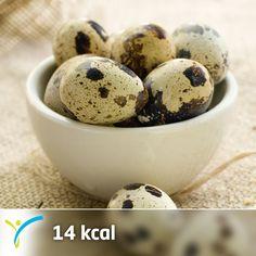 İşte bıldırcın yumurtası tüketmen için bilmen gereken birkaç fayda :) Öğrenmek için tıkla; http://on.fb.me/L4T3KD