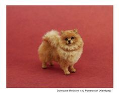 Kerri Pajutee realistic miniature animal sculptures for the dollhouse enthusiast or impassioned collector. Polymer Clay Cat, Polymer Clay Animals, Dog Sculpture, Animal Sculptures, Miniture Animals, Pet Dogs, Dog Cat, Super Cute Dogs, Clay Cats