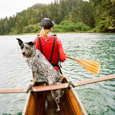 Dog-Friendly Vacations on the West Coast Best vacations for dog lovers: Mendocino coast, California. Best vacations for dog lovers: Mendocino coast, California. Dog Friendly Hotels, Hiking Dogs, Ga In, Pet Travel, Travel Tips, Travel Destinations, Travel Info, Travel Usa, Viajes