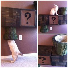 Super Mario Brothers meets Cat Furniture equals Awesome.