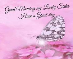 Looking for Good Morning Wishes for Sister? Start your day by sending these beautiful Images, Pictures, Quotes, Messages and Greetings to your Sis with Love. Motivational Good Morning Quotes, Good Morning Friends Quotes, Good Morning My Friend, Good Day Quotes, Good Morning Funny, Morning Greetings Quotes, Good Morning Messages, Morning Wish, Morning Sayings