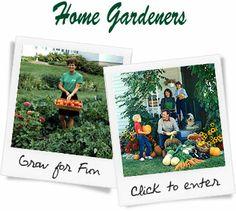 Harris Seeds - Vegetables Seeds, Flower Seeds, Plants, Bulbs, & Garden Supplies