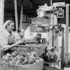 "Indústria de conserva de azeitona ""Cordeiro"", Estremoz. Décadas de 50/60."