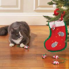 Zanies Holiday Stocking with 6nMice  will be the perfect way to give Christmas morning a new meaning to your cat!