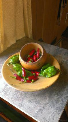 Potential salsa