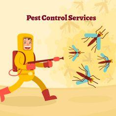 Best Pest Control, Pest Control Services, Companies In Dubai, Sharjah