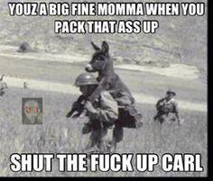 Lol Carl