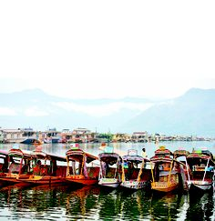 House Boat in Kashmir Srinagar, Paradise On Earth, Lost Paradise, Valley Of Flowers, Kashmir India, Bay Of Bengal, Amazing India, Visit India, Exotic Places