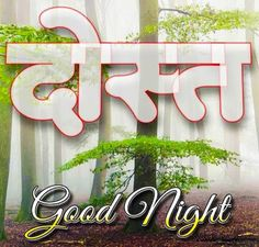 Good Night Images For WhatsApp Free Download New Good Night Images, Romantic Good Night Image, Lovely Good Night, Beautiful Good Night Images, Have A Good Night, Good Night Quotes, Good Morning Images, Great Love, Good Morning Cards
