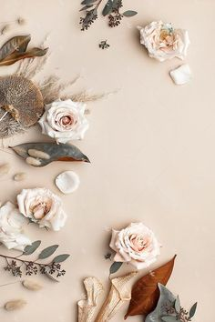 This image contains a soft mix of neutral florals on a light tan background. Flower Background Wallpaper, Flower Phone Wallpaper, Flower Backgrounds, Wallpaper Backgrounds, Stock Background, Beige Aesthetic, Flower Aesthetic, Aesthetic Iphone Wallpaper, Aesthetic Wallpapers