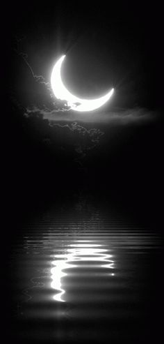 gif Black and White sky moon night edit water dark peaceful nature reflection bw darkness good night magical half moon Moon Moon, Luna Moon, Sun Moon Stars, Moon Art, Dark Moon, Moon Dance, Shoot The Moon, Moon Pictures, Moon Pics
