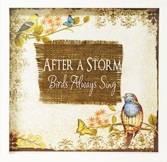 D.I.Y. After a Storm, Birds Always Sing