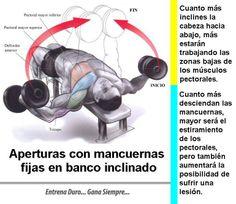 Ejercicio Apertura con mancuerna fija - #Culturismo en curso http://williambodybuilder.com/ http://fuerzamaximawilliam.wordpress.com/