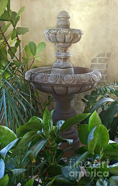 Beautiful Fountain Indoors With Plants Fine art print
