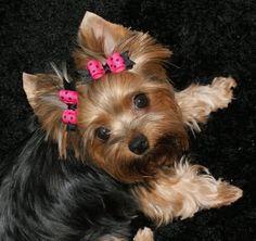 :) love the hair accessory doll :)