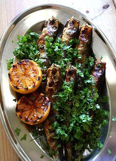 maroshubi of sardine / lemon grilled sardine