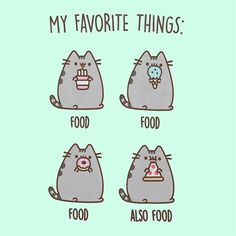 I look a little bit like pusheen, but i'm not fat or poofy!