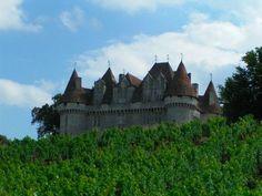 @Dordogne Jazz Summer School on Pinterest - Château de Monbazillac #BeautifulFrance @ILPFRANCE @BeautifulFrance @photoworkshops1 pic.twitter.com/dT7VhgRzTU