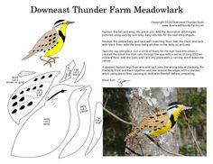 The Melodious Meadowlark | Downeast Thunder Farm
