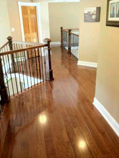 Walnut stained red oak floors