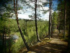 Oulanka National Park, Kuusamo,Finland