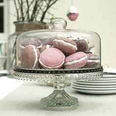 Glass Dome Baking Stand