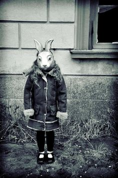 Creepy little White Rabbit........