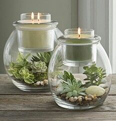 Great way to change it up..  Terrarium Clearly Creative Hurricanes. Pictured here with a Glolite Jar $85(back pic) and Escential Jar $75(front pic) Let your imagination loose with Clearly Creative Range (see more pins on my Cool Clearly Board)  #ffaawj #jodicandles check out more @ https://jodis.partylite.com.au