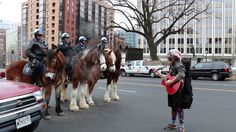 Police horseys get happy song at Inauguration!! Swoooon :) :) :) https://www.youtube.com/watch?v=gwMwRe-XWd4