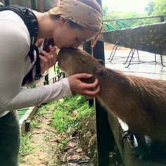 Including with humans. | 18 Pictures That Prove Capybaras Are The Chillest Animals On Earth