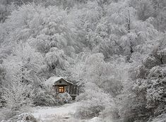 21 Isolated Houses That Will Steal Your Heart – The Awesome Daily - Your daily dose of awesome