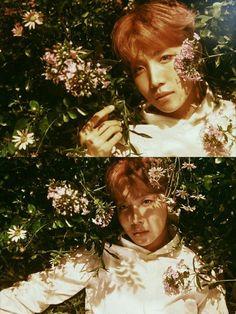 BTS | Jung Hoseok | Jhope ℓιкє тнιѕ ρι¢? fσℓℓσω мє fσя мσяє @αмутяαи444 ʕ•ᴥ•ʔ
