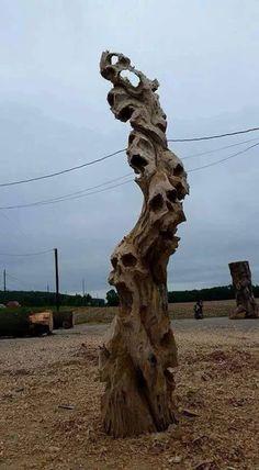 Cool skull driftwood carving by Scott Dow Halloween Diy, Halloween Decorations, Halloween Design, Creation Art, Skull Art, Wood Carving, Dark Art, Oeuvre D'art, Driftwood