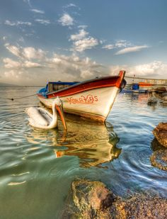 How To Get Started With Salt Water Fishing. Photo by Ricardo's Photography (Thanks to all the fans! Nature Pictures, Cool Pictures, Boat Illustration, Boat Drawing, Foto Fun, Fishing Photography, Boat Art, Old Boats, Boat Painting