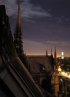 Cathedral Notre Dame de Paris - France.