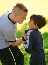 Image result for bully