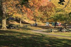 Sustainable Business Oregon names Multnomah Village (which includes Gabriel Park, pictured here) one of Portland's 12 greenest neighborhoods.